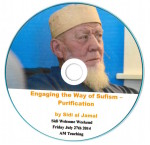 Engaging the Way of Sufism